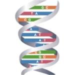 巻き爪 遺伝的要素